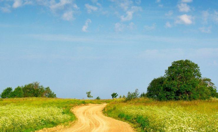 Konica Minolta recognised for sustainability initiatives