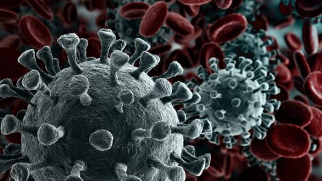 Going viral: your coronavirus hub